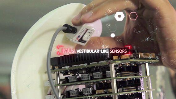 Binocchio Biper IMU vestibular-like sensors